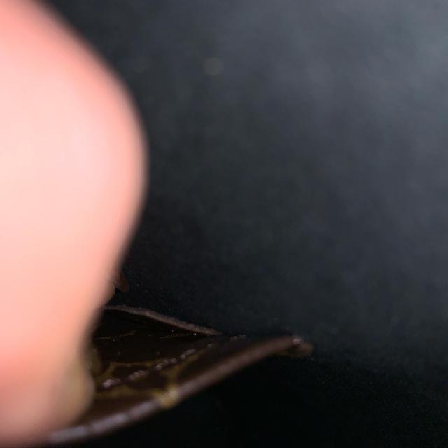 LOUIS VUITTON(ルイヴィトン)のHMP様専用 レディースのバッグ(ハンドバッグ)の商品写真