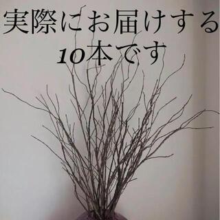 即日発送 インテリアに◎ フェイク 造花 木の枝 75センチ 10本セット 新品(その他)