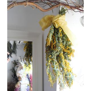 mimosa 春の花ミモザのドライフラワースワッグ(ドライフラワー)
