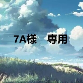 7A様 専用(その他)