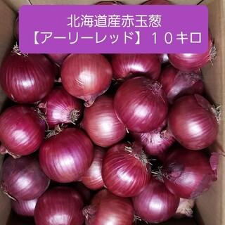 北海道産 赤玉ねぎ【アーリーレッド】 Lサイズ 約10キロ (野菜)