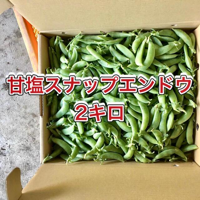【鹿児島産】甘塩スナップエンドウ箱込み2キロ^_^ 食品/飲料/酒の食品(野菜)の商品写真