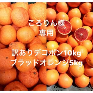 ころりん様専用 訳あり品 愛媛県 デコポン 傷スレあり 10kg(フルーツ)