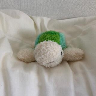 ぬいぐるみ 亀(ぬいぐるみ)