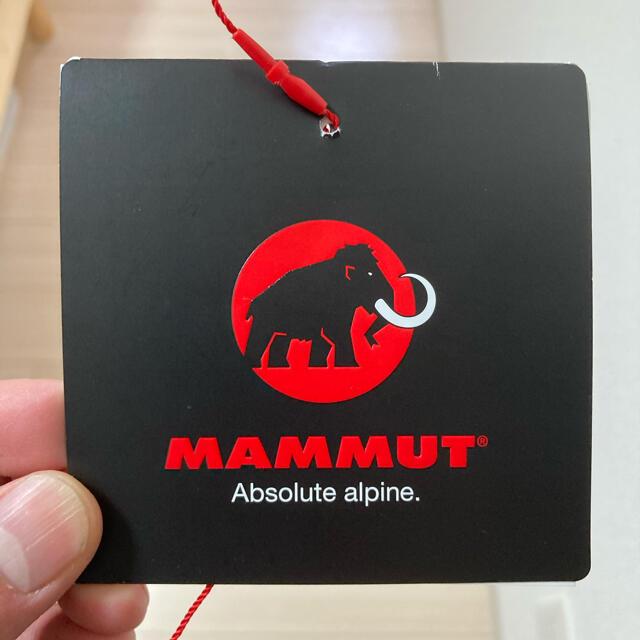 Mammut(マムート)ののび4666様専用 マムート ダウン ジャケット クレーター サーモフーテッド  メンズのジャケット/アウター(ダウンジャケット)の商品写真