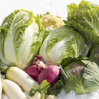 【農家直送】冬野菜残りわずか 送料込 渥美半島 満杯採れたて野菜 野菜詰め合わせ