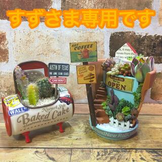 多肉植物の寄せ植え 丘の上のカフェ2号店 ちびジュース缶(その他)
