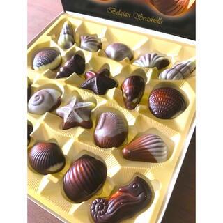 バレンタイン ベルギー シーシェル チョコレート 20粒入×1箱(菓子/デザート)