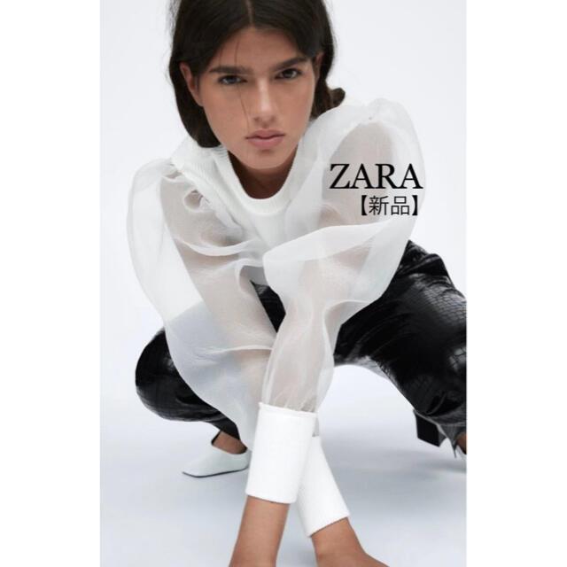 ZARA(ザラ)の【新品未使用】ZARAレディーストップス レディースのトップス(カットソー(長袖/七分))の商品写真
