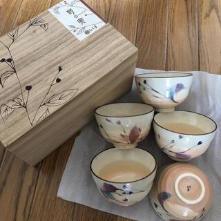 たち吉 - たち吉 野の実 茶碗