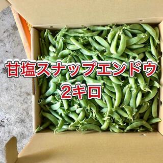 【鹿児島産】甘塩スナップエンドウ箱込み2キロ^_^(野菜)