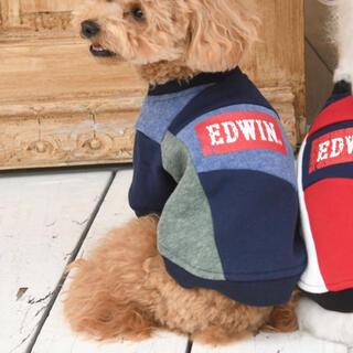 エドウィン(EDWIN)のEDWIN ストレッチングスウェット 犬 服 S(犬)