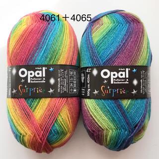 ☆Opal オパール毛糸☆ ✳︎サプライズ✳︎(4061、4065)各1個