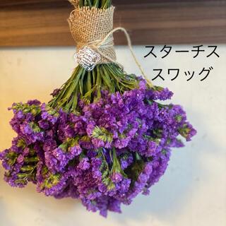 スターチス(紫)スワッグ(ドライフラワー)