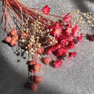 ドライフラワー ピンク花材①(ドライフラワー)