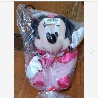ディズニー(Disney)のミニースペシャルペアぬいぐるみ(キャラクターグッズ)