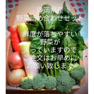 静岡県産野菜詰め合わせセット(野菜)