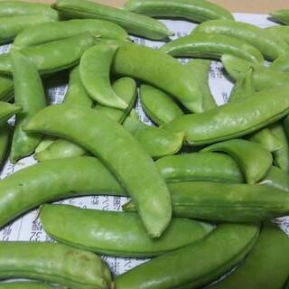 スナップエンドウ 500g(野菜)