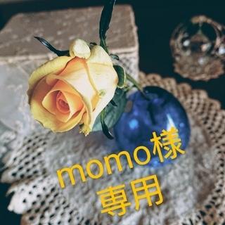 momo様専用(ドライフラワー)
