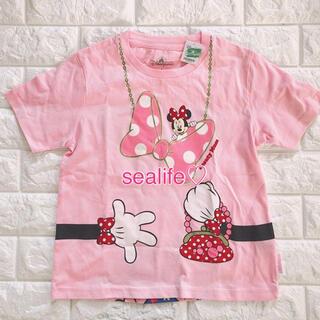 Disney - 新品未使用✨香港ディズニー❣️キッズ Tシャツ ミニー Sサイズ