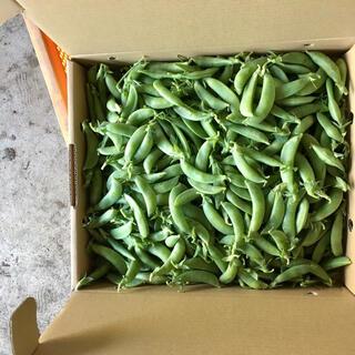 【鹿児島産】甘塩スナップエンドウ箱込み4キロ^_^(野菜)