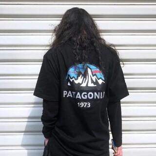 patagonia - 最安値!送料無料  パタゴニア Tシャツ タン 国内正規品  Sサイズ