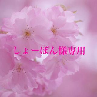 豪華で可憐♡『コスモスダブルクリック バイカラーバイオレット』花の種10粒(その他)