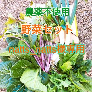 畑直送‼︎ 味自慢野菜セット       農薬不使用(野菜)