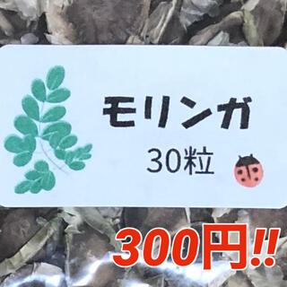 【モリンガ】奇跡の木 モリンガの種30粒 ハーブ タネ 美容健康 モリンガ 種子(野菜)
