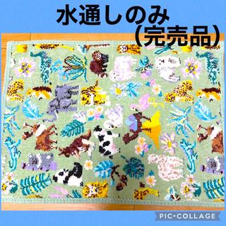 FEILER - 【完売品】フェイラーゲストタオル ワールドアニマル