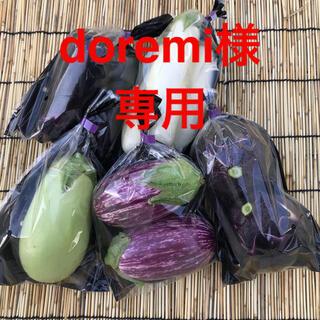 ナス詰め合わせ(野菜)