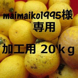 maimaiko1995様専用☆ 加工用20k湘南ゴールド 🍊訳あり不選別(フルーツ)