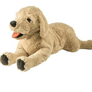 イケア(IKEA)のソフトトイ 犬(ぬいぐるみ/人形)
