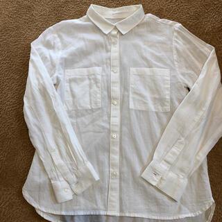 ザラ(ZARA)のZARA ブラウス シャツ 入学式 卒業式 フォーマル 白シャツ 140(ブラウス)