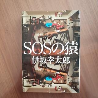 SOSの猿(その他)