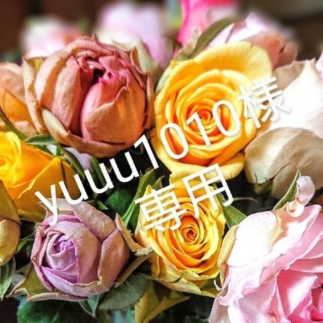 yuuu1010様専用  ハンドメイドのフラワー/ガーデン(ドライフラワー)の商品写真