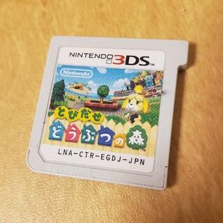 ニンテンドー3DS - 3DS 「とびだせ どうぶつの森」