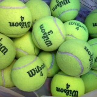 ウィルソン(wilson)のWilson 中古テニスボール20個(ボール)
