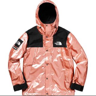Supreme - Supreme The North Face Metallic Mountain