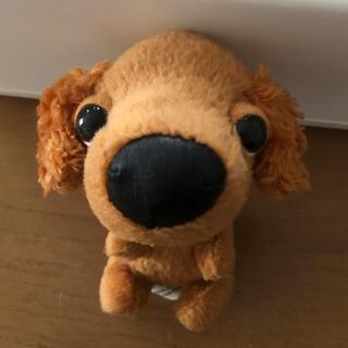 マクドナルド(マクドナルド)のマック ハッピーセット THE DOG ザドッグ ぬいぐるみ(ぬいぐるみ)
