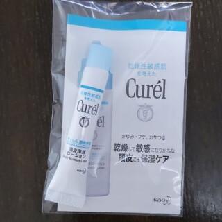 Curel - キュレル 頭皮保湿ローション