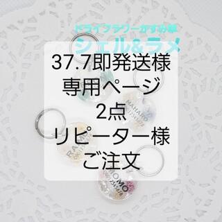 迷子札 かすみ草 シェル&ラメ(犬)