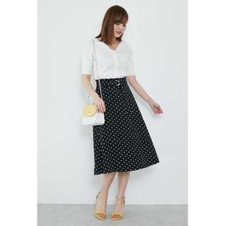 PROPORTION BODY DRESSING - ドットスカート サイズ2