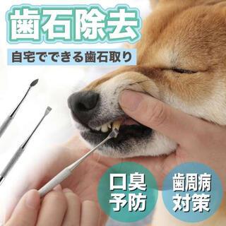 ペット スケーラー 歯石 除去 掃除 清潔 犬 ネコ 歯ブラシ 歯周病 ケア