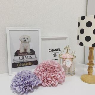 フランフラン(Francfranc)のアートポスター A4サイズ 白フレーム付き 壁掛け(犬)