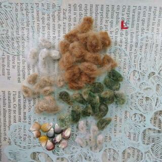 綿花の種 四色 【L】(その他)