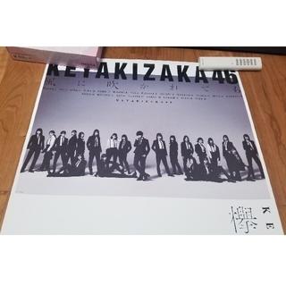 欅坂46(けやき坂46) - 欅坂46  平手友梨奈 長濱ねる 不協和音 二人セゾン 風に吹かれても ポスター