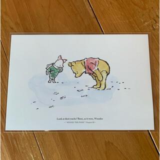 クマノプーサン(くまのプーさん)のくまのプーさん ポストカード(その他)