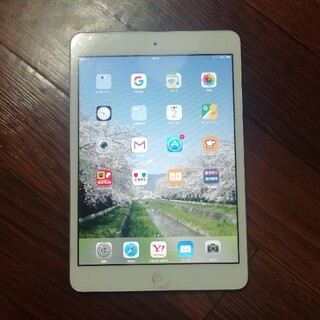 iPad - ipadmini