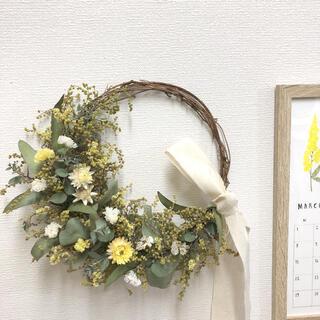 コロコロミモザ蕾のイエローリース♡ドライフラワーリース(ドライフラワー)